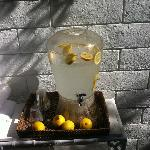 Mmm lemonade stand