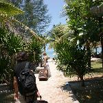 plage en face et bungalows a droite mais attention a 6h du mat la clim très bruyante s' allume