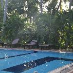 Heerlijk afkoelend zwembad