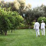 Impecables trabajadores, van a buscar naranjas de los jardines