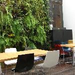 Area abierta con jardin vertical