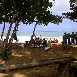 Bluff beach surf season