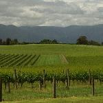 Yarra Valley Grand