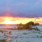 Photo de Selingan Island Resort