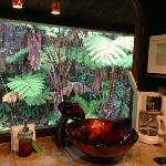 Hapu'u Bungalow kitchen area.  Rain forest out the window.