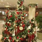 Christinas decoration/end of November