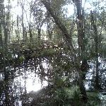lugar de contemplação da natureza