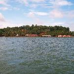 Natural beauty of Ashtamudi Lake