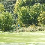 Par 5 approaching green