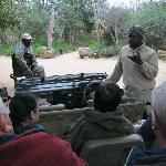 start safari