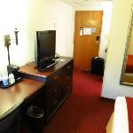Room 231