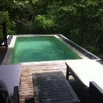our pool and sunbeds in the villa/ forest