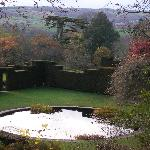 view over the pond