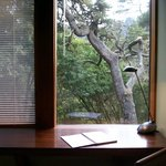 Pacific & Bay Rooms Overlook the Native Bishop Pine Forest