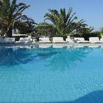 great pool and sunning area