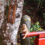 木組の猿見つけて下さい