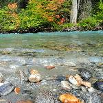 Autumn Coulor, Glacier water on the Thunder Creek Trailhead
