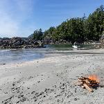 Deserted beach on Flores island