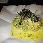 halibut on a risotto