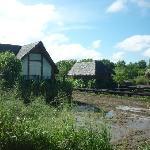 Muddy Villas