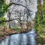 The river at Rivelin