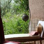 von der Terrasse blickt man in den schönen Garten