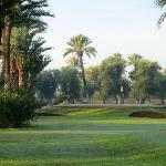 Un 9 trous compact pour les golfeurs dans le club