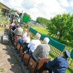 Brogdale's own minatuare railway, an ideal way to tour the orchards