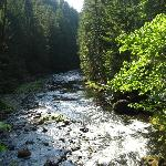 salmon river #742