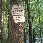 Trail # 742 entering huckleberry wilderness