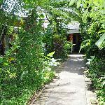 Jardines desde una habitacion