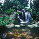 Sheraton Towers Singapore Signature Waterfall