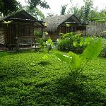 garden and cabin