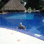 Pool, swim up bar and me, heated pool.
