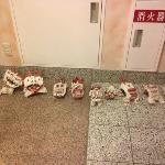 Shisa Dogs at entrance