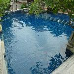 Pool outside villa