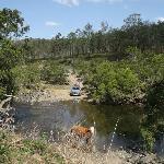River crossing near campsite