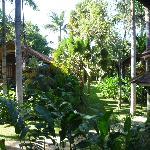 Tree cabins in a hotel garden