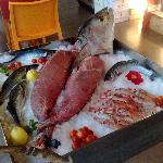 Il pesce fresco
