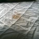 microtel mattress cover stains