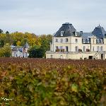 The Chateaux as seen from the new vineyard offices