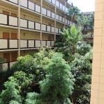 La nature au milieu de cet hôtel