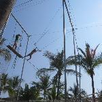 Trapeze for Mini Club