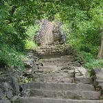 A section of the many stairs to the gorge trail.