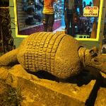 we found this statue in town but didn't see any real Armadillos