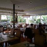 Photo of Zenia bar