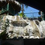 Waterfall coming from pool