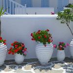 Pretty pots outside reception