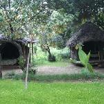 Always cool enviroment at Miti Mingi Eco Camp