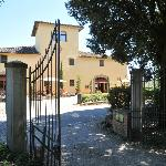 Photo of Tenuta il Corno